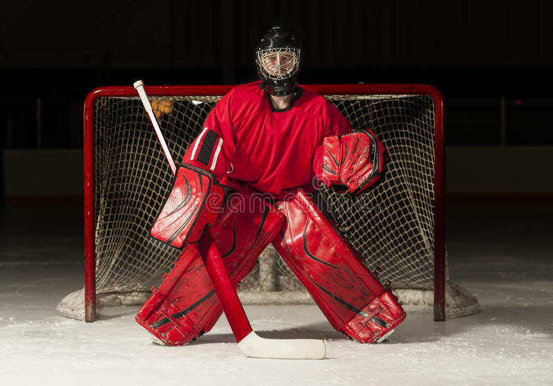Ice hockey goalie. In front of a goal net stock images
