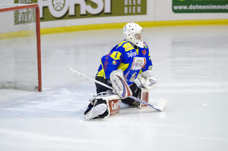 Download Ice Hockey Goalie Editorial Stock Image - Image: 27453719