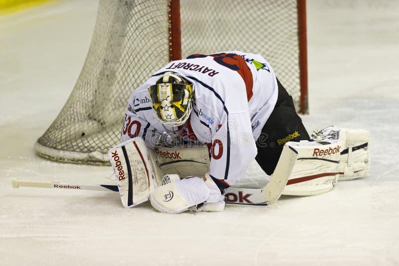 Ice Hockey Goalie royalty free stock image