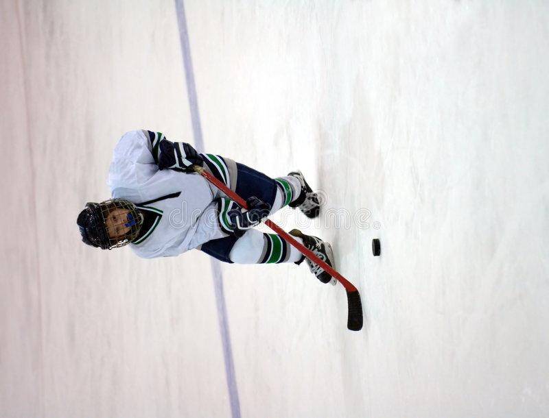 Download Ice Hockey Player Royalty Free Stock Images - Image: 3554909