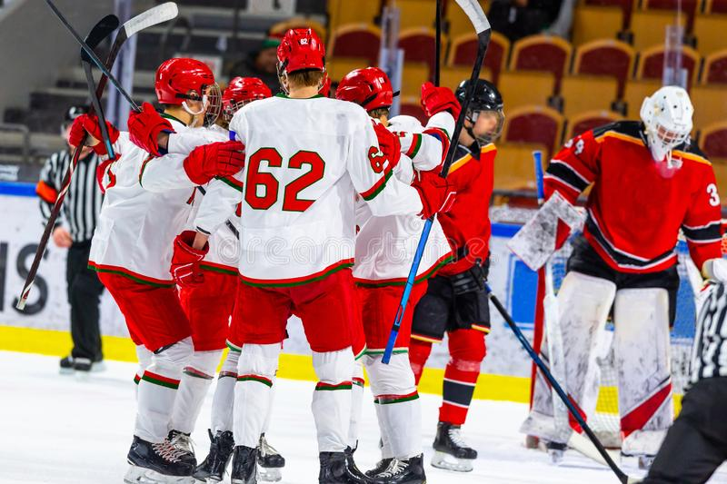 Ice hockey players celebrating a victory. Goal royalty free stock photography
