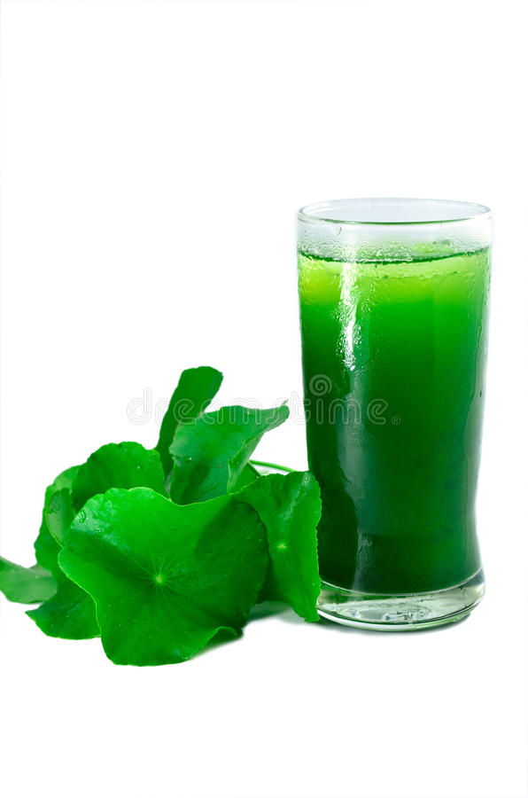 Ice juice. Of the Asiatic Pennywort royalty free stock photos