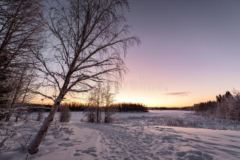 The ice lake and forest has covered with heavy snow and nice blue sky in winter season at Holiday Village Kuukiuru, Finland. Background beautiful blizzard royalty free stock image