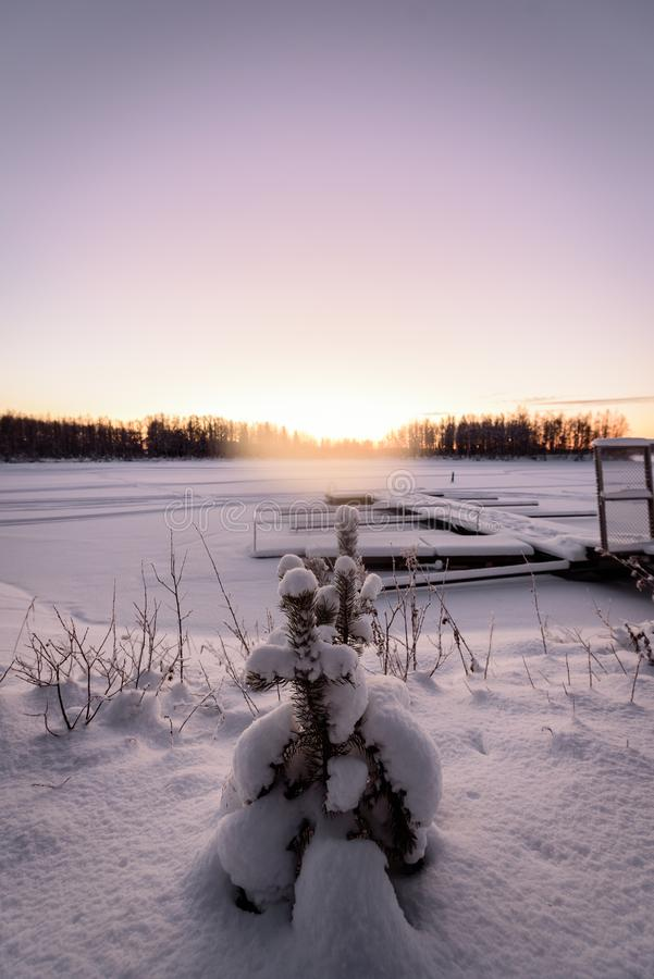 The ice lake and forest has covered with heavy snow and nice blue sky in winter season at Holiday Village Kuukiuru, Finland. Background beautiful blizzard royalty free stock photo