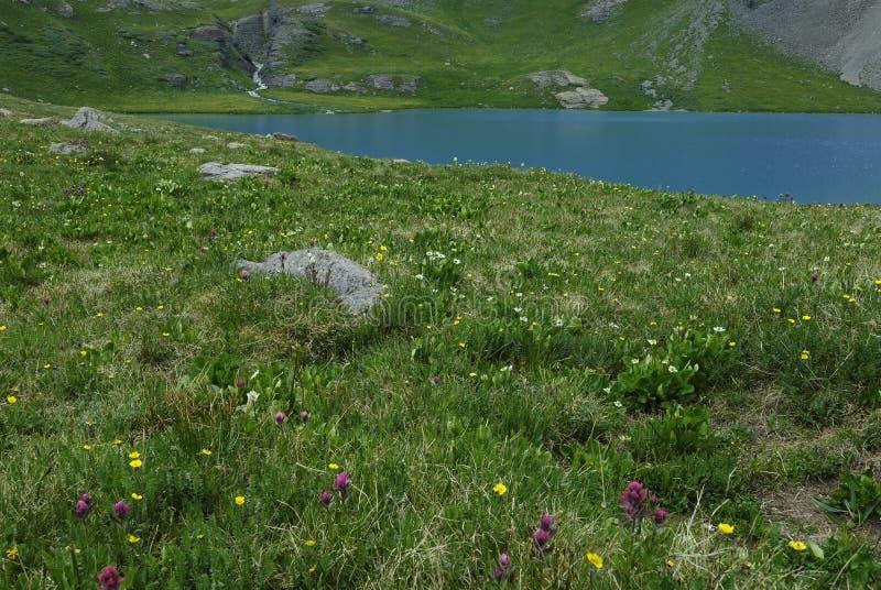 Download Ice Lake In San Juan Mountains In Colorado Stock Image - Image: 10543661