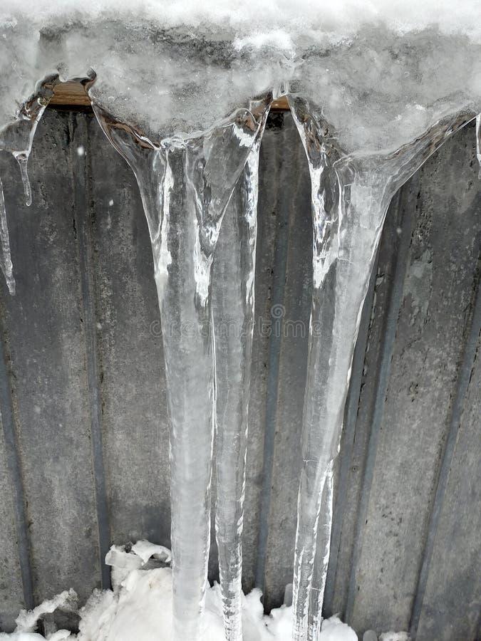 Ice lollipops stock photos