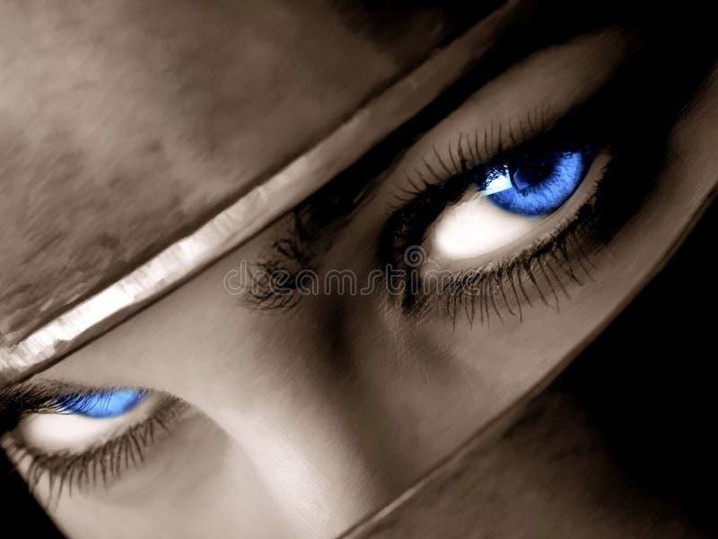 Download Ice Look stock image. Image of desire, veil, eyebrow, look - 5385893