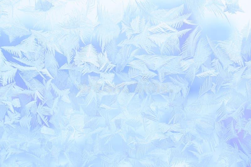 Ice ornament royalty free stock photos