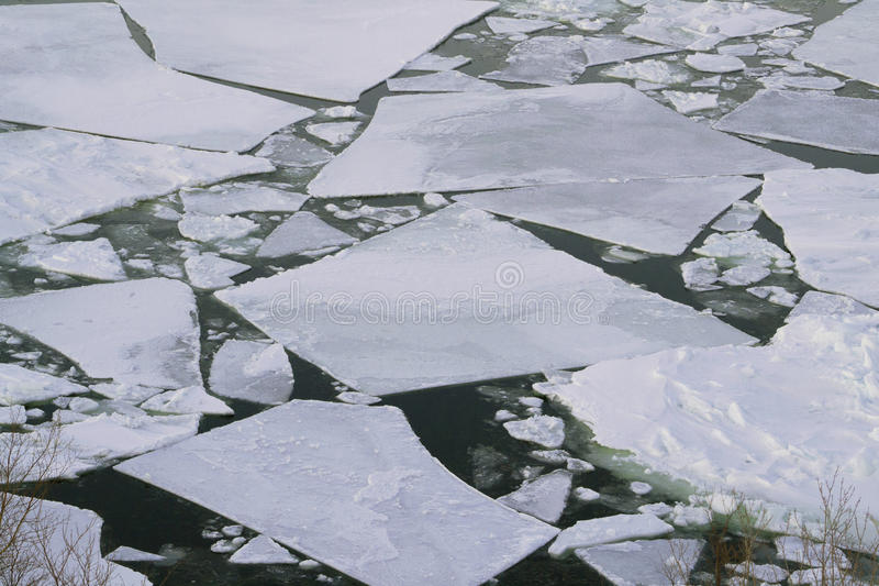 Download Ice Pans in the Bay stock photo. Image of newfoundland - 39508208