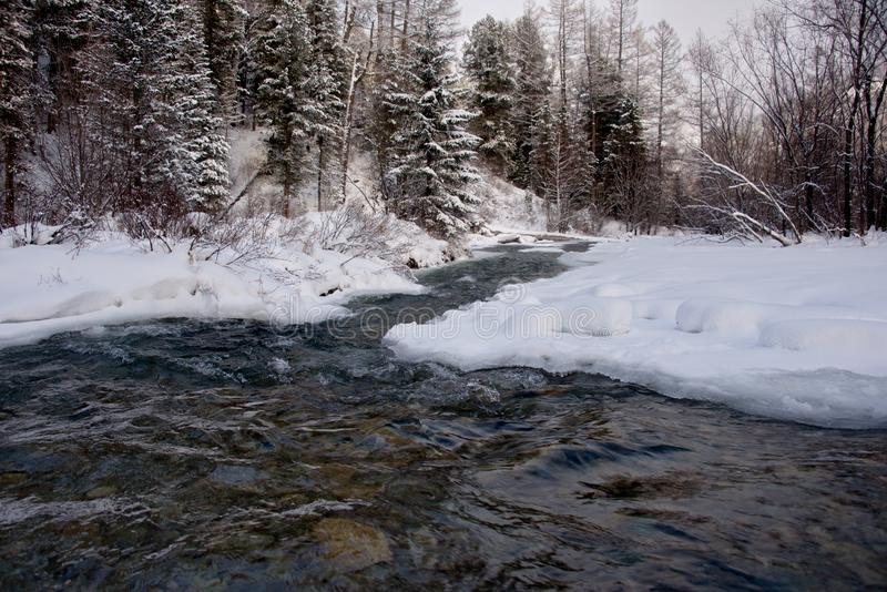 The ice on the rivers in late autumn. Russia. The South Of Western Siberia. In the cold rivers of the Altai Mountains in late autumn very clean water royalty free stock image