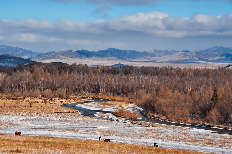 The ice on the rivers in late autumn. Russia. The South Of Western Siberia. In the cold rivers of the Altai Mountains in late autumn very clean water stock photos
