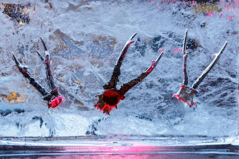 Ice Sculpturehorns inside ice in Festival in Jelgava, Latvia in February 9, 2019. Ice Sculpture And Light Festival in Jelgava, Latvia in February 9, 2019б royalty free stock images