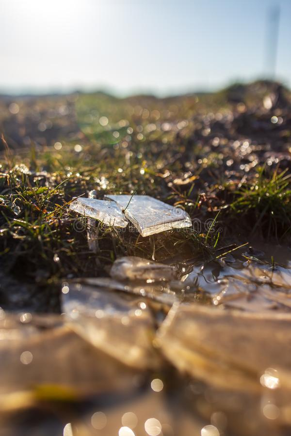 Ice shards on spring grass as background.  royalty free stock images