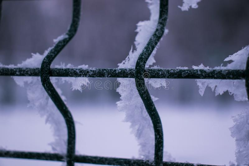 Ice and snow on an iron grate in winter royalty free stock photography