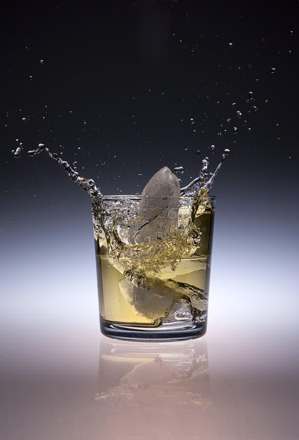 Download Ice splashes in beverage. stock image. Image of splash - 28524939
