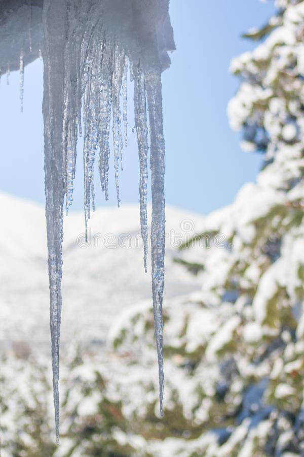 Ice stalactites hanging from the roof stock image