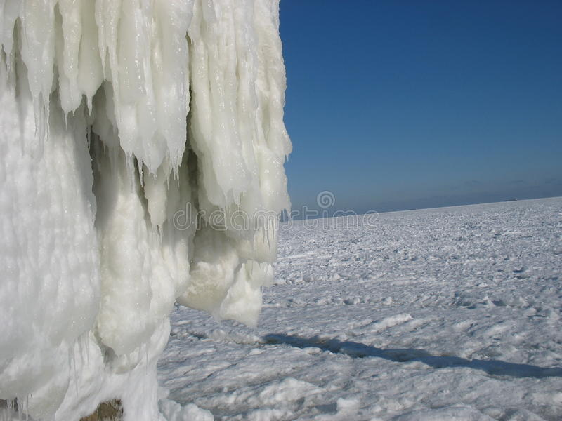 After the ice storm stock photography