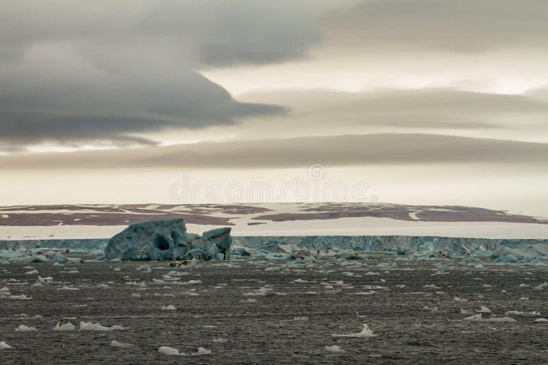 iceberg image stock