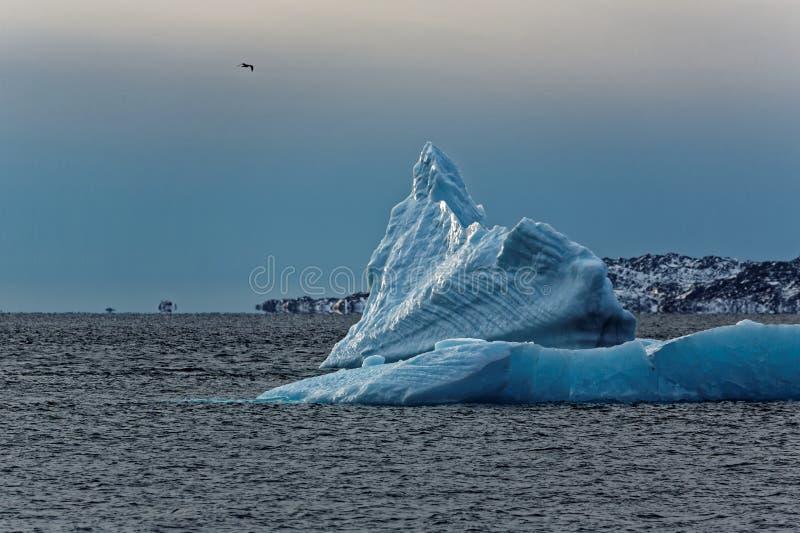 iceberg obraz stock