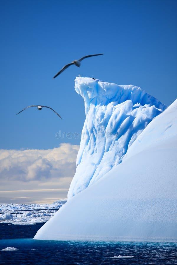 Download Iceberg antárctico foto de stock. Imagem de mosca, horizontal - 16869190
