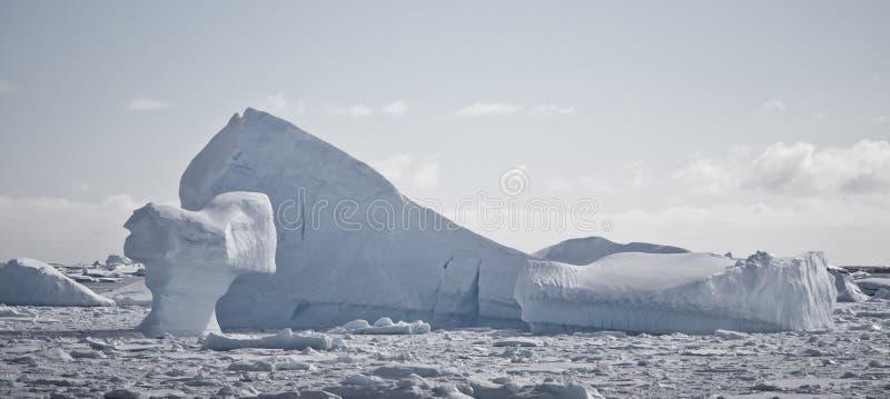 Iceberg antártico fotografía de archivo