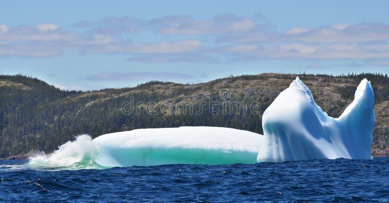 Iceberg stock photography