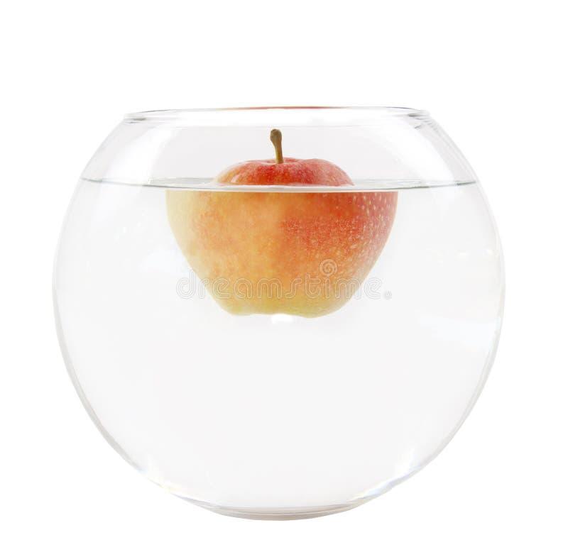 Iceberg de Apple imagem de stock