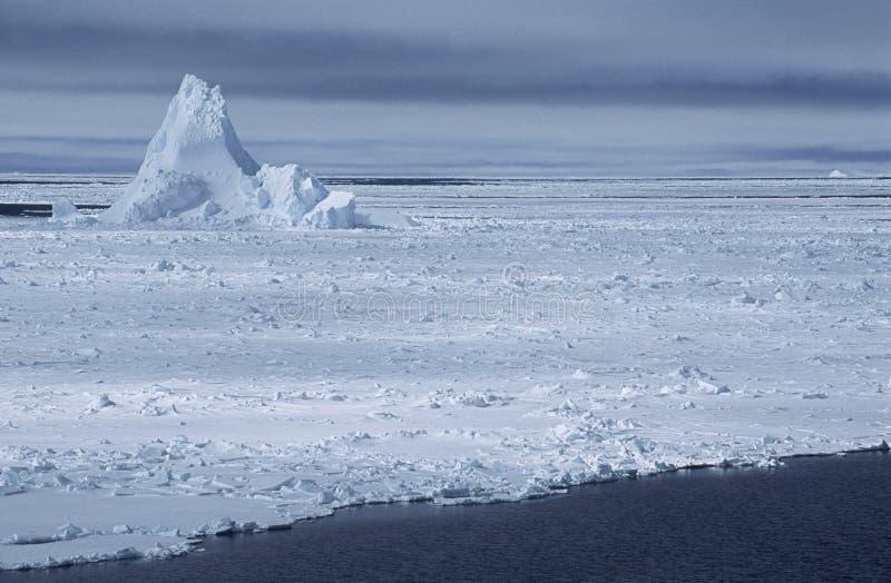 Iceberg Di Mare Di Weddel Dell Antartide Nel Giacimento Di Ghiaccio Fotografia Stock Libera da Diritti