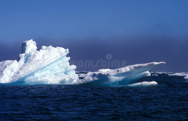 Iceberg Greenland royalty free stock images