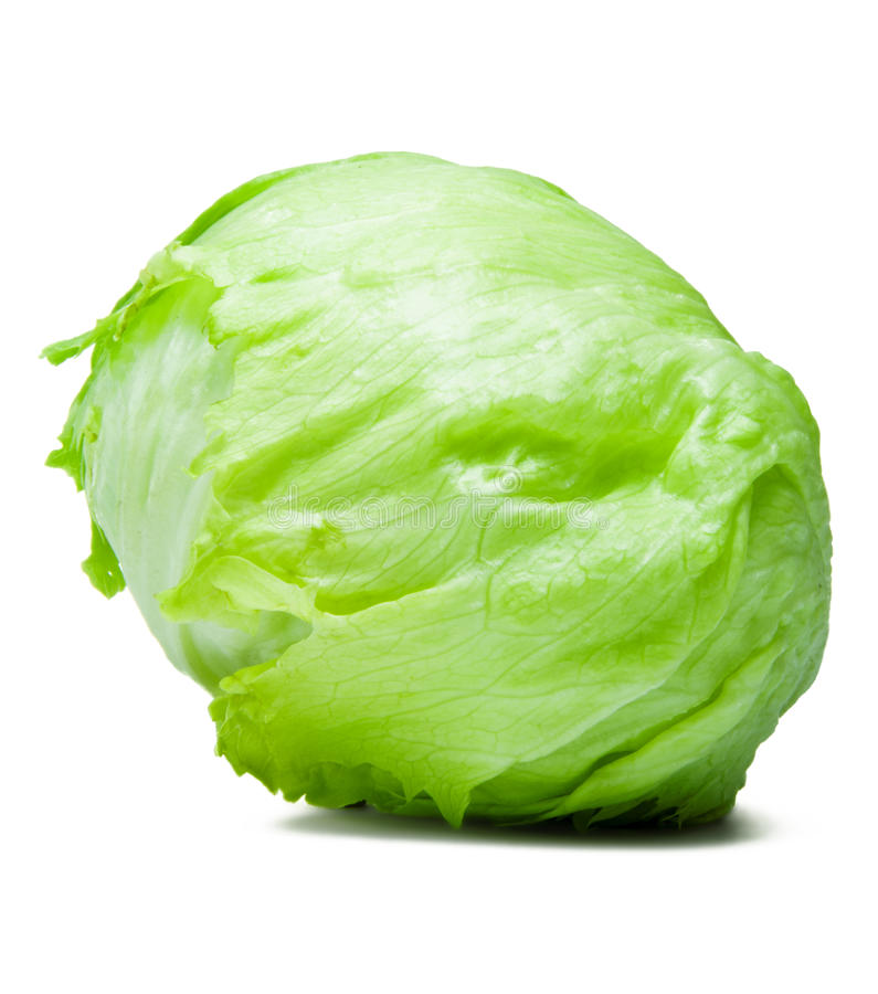 Download Iceberg Lettuce Alcapucci stock image. Image of calories - 18135451