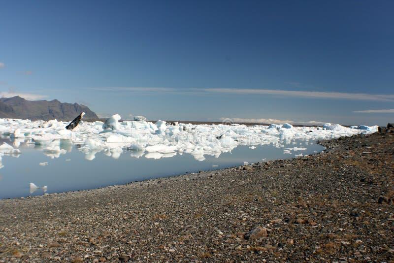 Download Icebergs beach stock photo. Image of white, seals, lake - 8693256