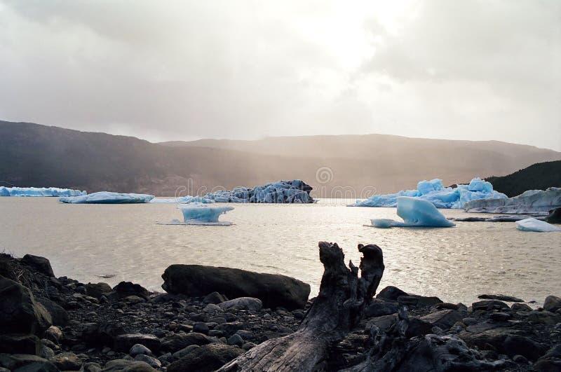 Icebergs bleus flottant dans le lac, Chili photographie stock