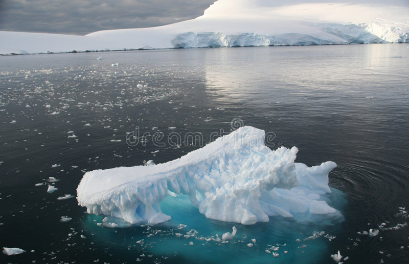 Icebergs and brash ice in calm
