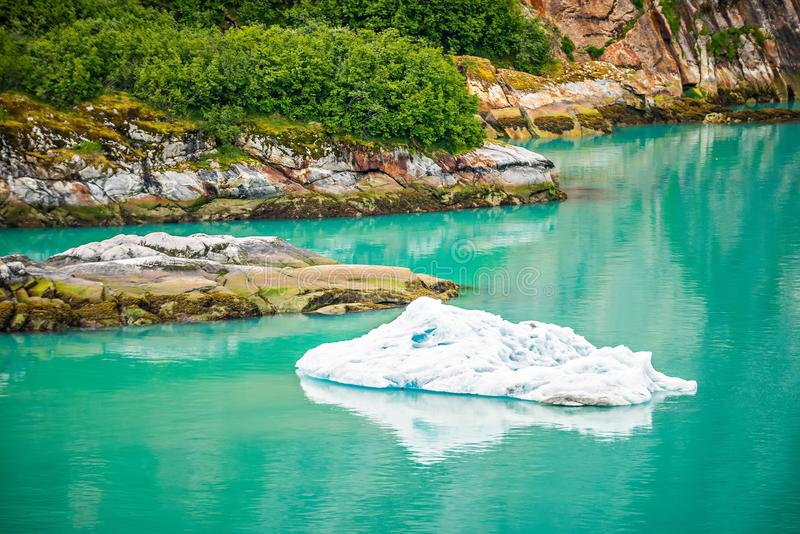 Icebergs de Sawyer Glacier du nord dans Tracy Arm dans Alask photographie stock libre de droits