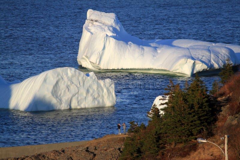 Download Icebergs in Harbour stock photo. Image of village, ocean - 24482488