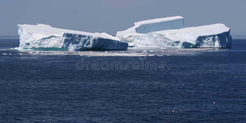 Icebergs from the Petermann Ice Island stock image