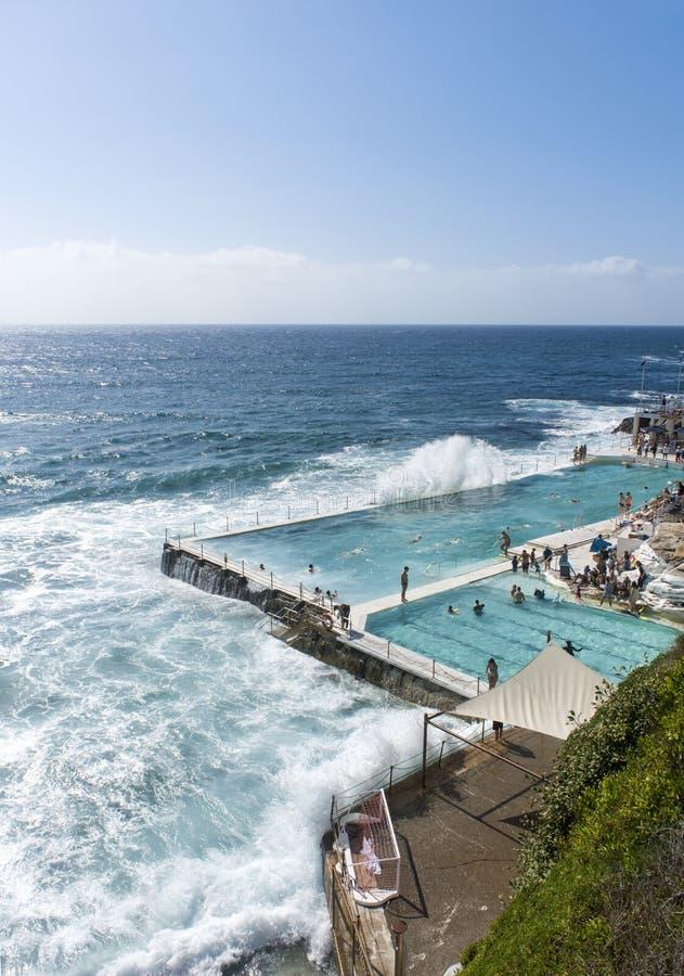 Icebergs Swimming club Bondi Beach stock photos