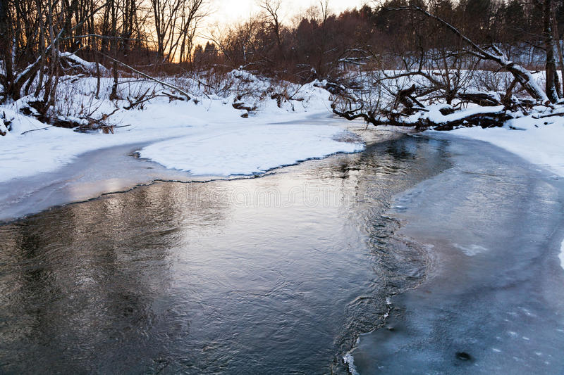 Icebound banks of forest pond. At winter sunset royalty free stock photo