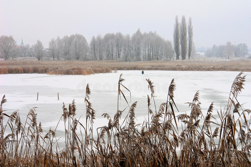 The icebound lake. In winter stock image