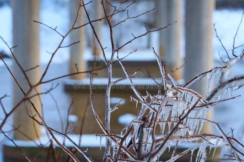 Iced branches close up with blurred columns of bridge, river and snow on a background. stock photos