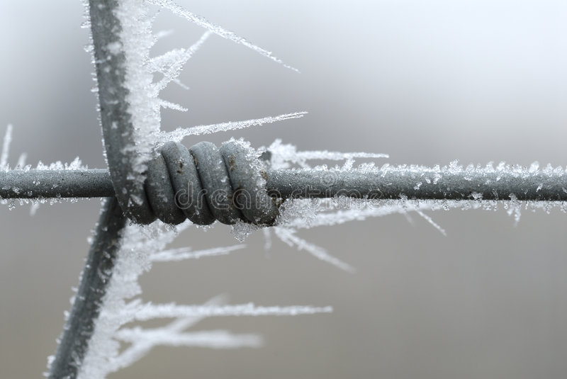 Download Iced Fence Royalty Free Stock Photos - Image: 5139648