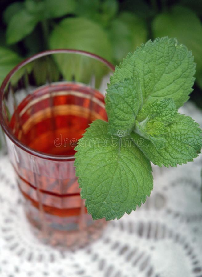 Iced Mint Tea royalty free stock image