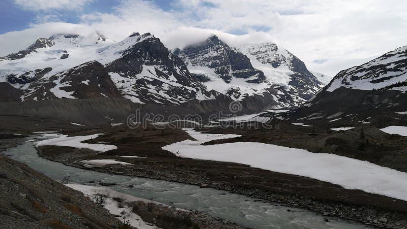 Icefield de Colombia imagen de archivo