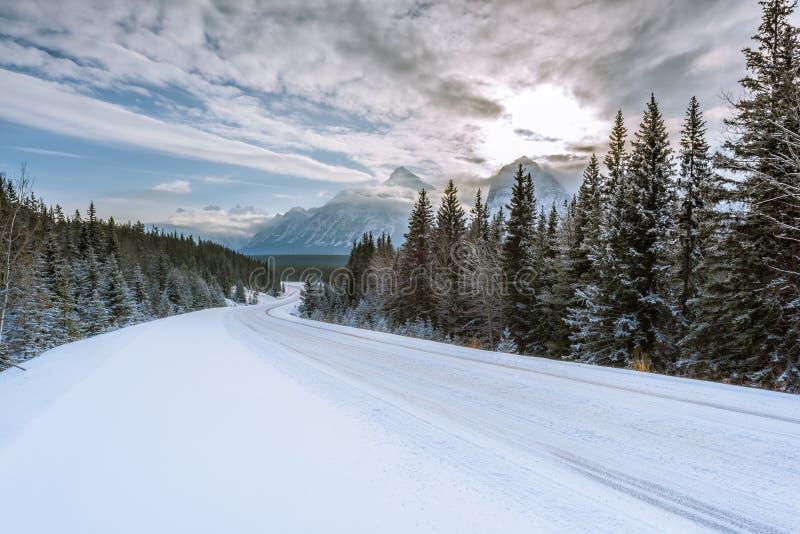 Icefields-Allee in kanadischem felsigem stockfotografie