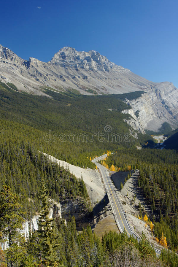 Icefields_parkway stock images