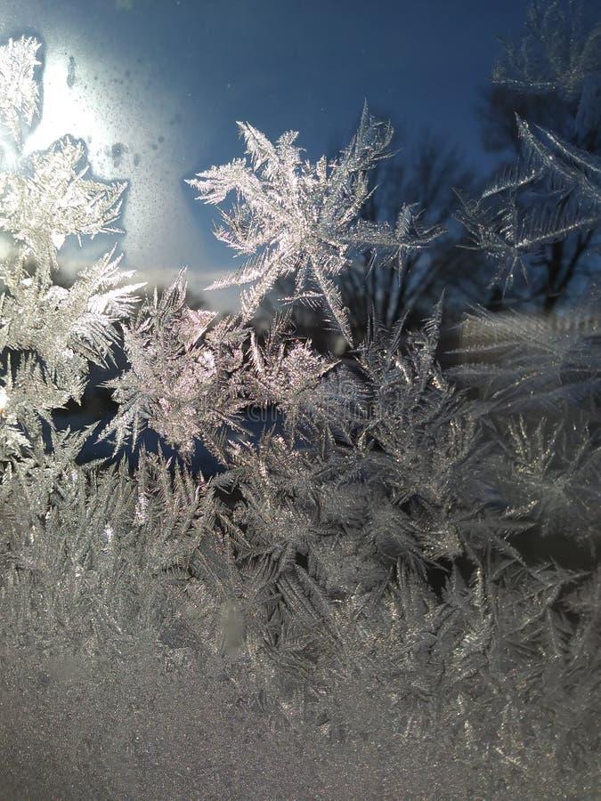 IceFlakes zdjęcie royalty free