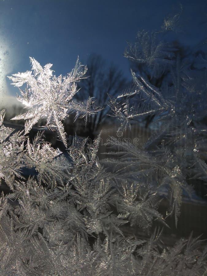 IceFlakes obrazy royalty free