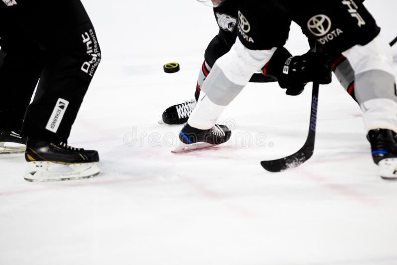 Icehockey – Bully Free Public Domain Cc0 Image