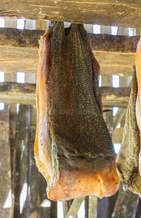 Iceland& x27 ζυμωνομμένος το s καρχαρίας στοκ φωτογραφία