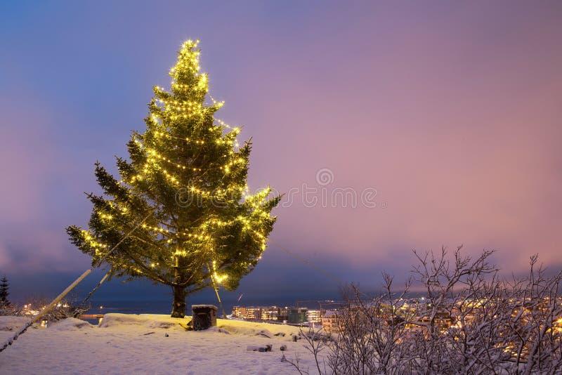 Iceland christmas. Decorated christmas tree outside overlooking Hafnarfjordur in Iceland royalty free stock photos
